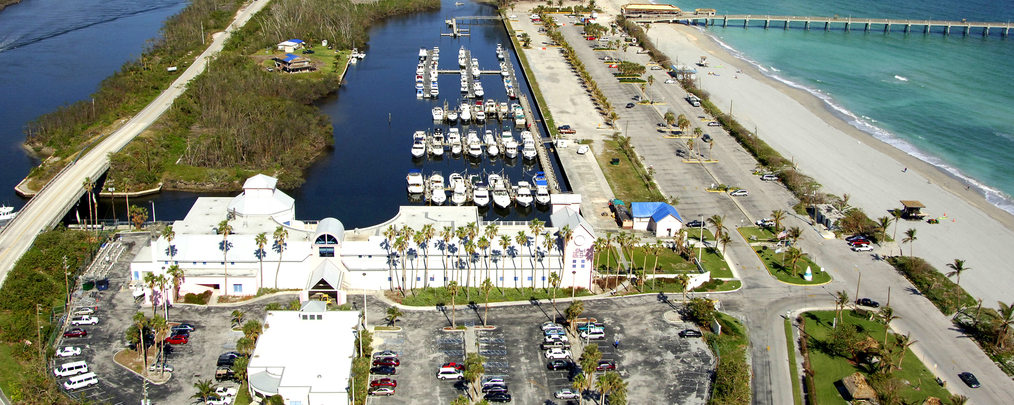 Dania Beach Marina Flushing Analysis