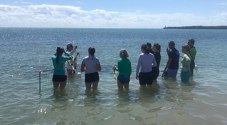 Workshop Recap: Seagrass Identification and In-Water Survey