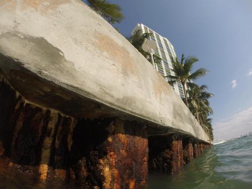 seawall inspection