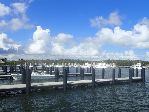 high tide near docks